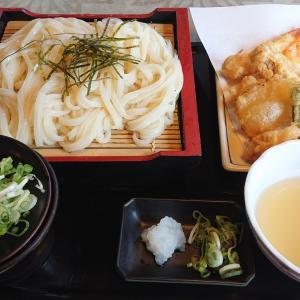 【玉野市子育て世帯応援商品券】で玉野飯ライド!!
