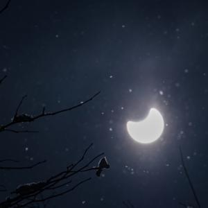 今日は24年ぶりのスーパームーン&皆既月食!