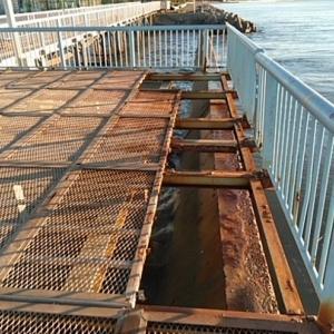 台風19号により大黒、磯子海釣り施設営業停止