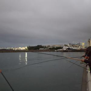 釣り場難民 ジギング タチウオ釣り