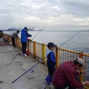 磯子海釣り施設 ウキフカセ釣り 良型来た?!