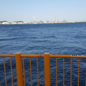 磯子海釣り施設 ウキフカセ釣り 数年ぶりにアレが!!