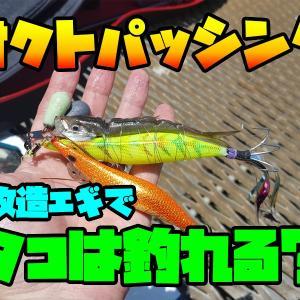 大賑わいの釣り施設でタコ釣りしたら・・・/磯子海釣り施設