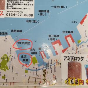 小樽港 投げ釣り