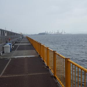 磯子海釣り施設 前編 タコ釣り、投げ釣り
