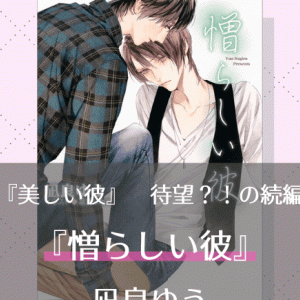 『憎らしい彼 美しい彼シリーズ(2)』/凪良ゆう