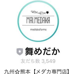 ☆公式LINEご登録者様☆3500人感謝セール☆