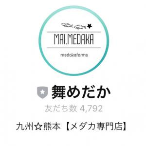 ☆★公式LINE4500人感謝セール予告★☆