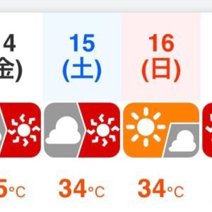 寒冷紗の効力