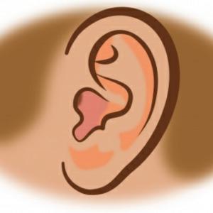 声と耳の相乗効果