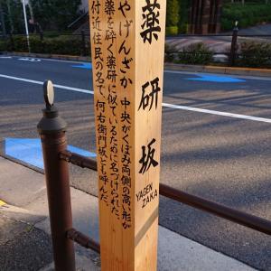 赤坂の有名な坂、その3
