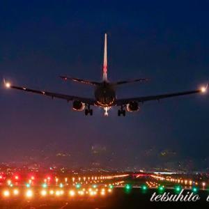 真夏の夜は飛行機を見に行きました。。。