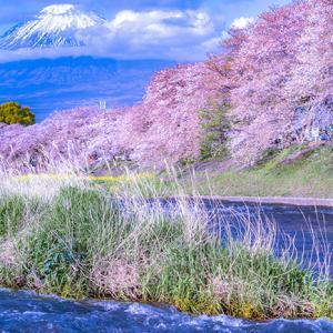 龍巌淵・富士山遠望。。。