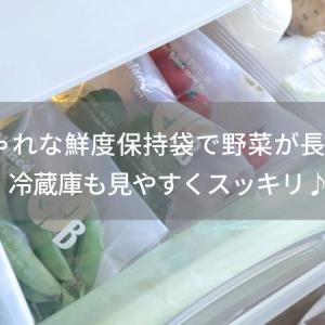 おしゃれな鮮度保持袋で野菜が長持ち!冷蔵庫も見やすくスッキリ♪