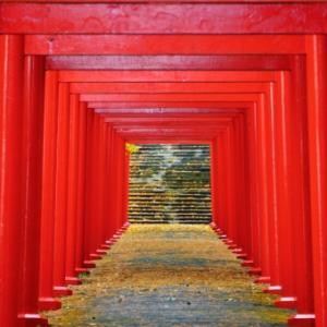 札幌市神社例祭2021まとめ~北海道神宮から各区の神社それぞれ紹介~
