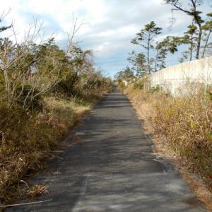 遠州灘~天宮神社お守り求め79kmサイクリング