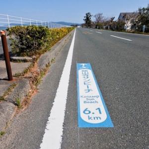浜名湖一周(ハマイチ)+浜松城100kmサイクリング