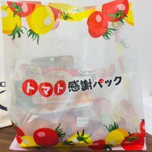 今日はトマトのおたのしみ袋を購入