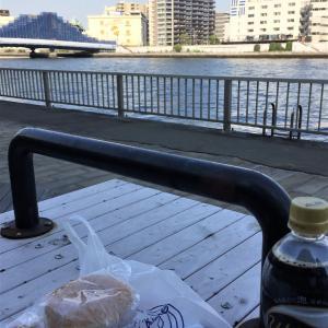 今日は隅田川テラス散歩