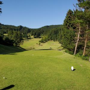 まさに、ゴルフ日和の一日でした。