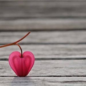 バタバタとドキドキのバレンタインデー。