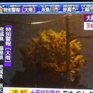 新潟にも大雨特別警報が…