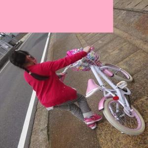 学校で自転車教室