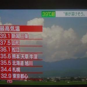 夏休み13日目 酷暑