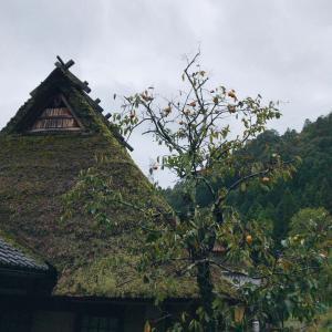 京都・美山に行ってきた(1)