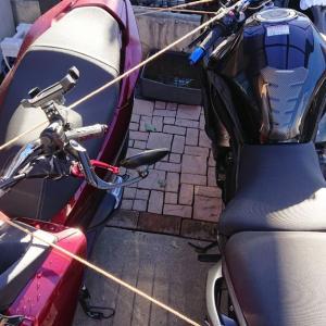 台風に備えてバイクを固定してみた件