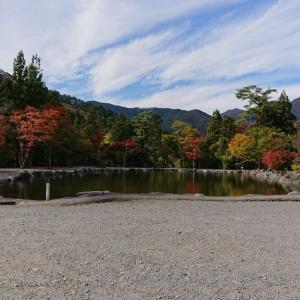 道志の森キャンプ場と紅葉