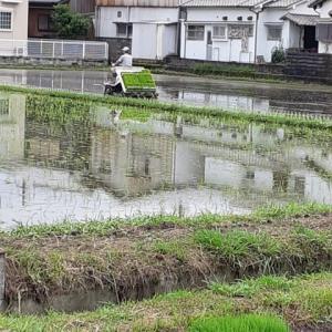 播州方面は空梅雨か?