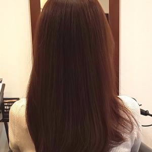 月に一度の美髪クリニック