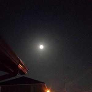 10月と月と懐かしのポンちゃん