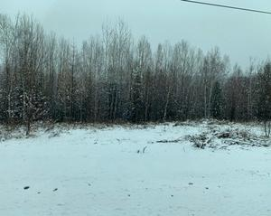 休暇を利用してシベリア鉄道(7)