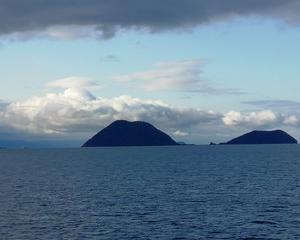 ダッシュ島が見える、、