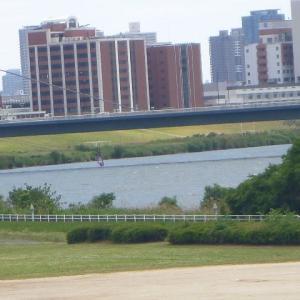 大阪で一番大きい河川の 堤防を 歩く。