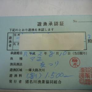 令和2年 13回目の鮎釣行 2回目の猪名川漁業組合(一庫ダム上流)