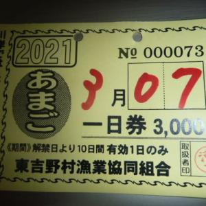 高見川 アマゴ釣り 惨敗する!!(完敗)