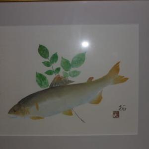 令和元年 23回目の鮎釣り 有田川ダム上流3回目の釣行記録