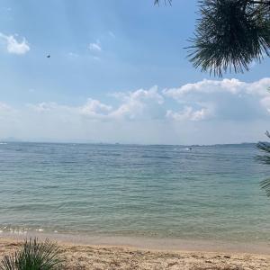 琵琶湖でぷかぷか
