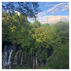 白糸の滝お散歩(*´艸`*)