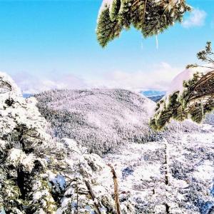 👼🐉【北八ヶ岳】の冬景色❢❢