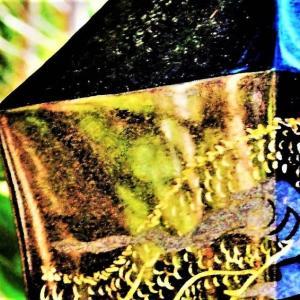 👼🐉〖御岩神社〗八大竜王塚の剣に【龍神様】出現❢❢