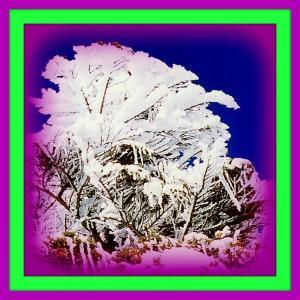👼🐉《北八ヶ岳》樹氷美に【菩薩様】出現❢❢