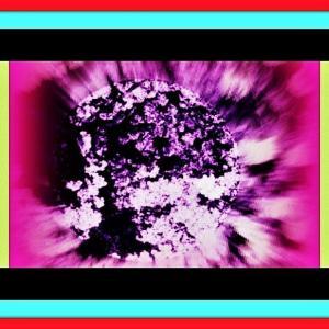 👼🐉【不動明王様】豪華絢爛の〖夜桜〗に出現❢❢