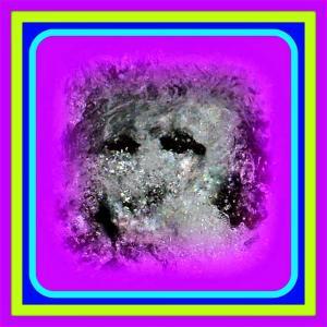 🐉🌈湧水・清流に【精霊】出現❢❢
