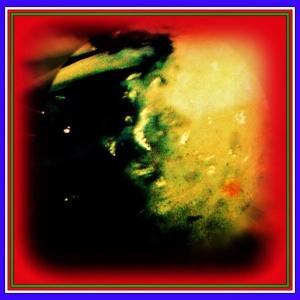 👼🐉〖錦鯉〗背中に御慈悲の【🔥不動明王様🔥】出現❢❢