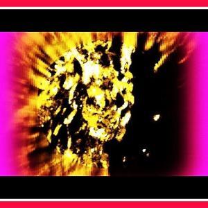 👼👽〖湧水・小滝〗に全身姿の【👾宇宙人】登場❢❢