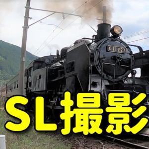 【ツーリング】ジェラートを食べた後に、大井川鐵道沿いでSLと並走する貴重な体験。